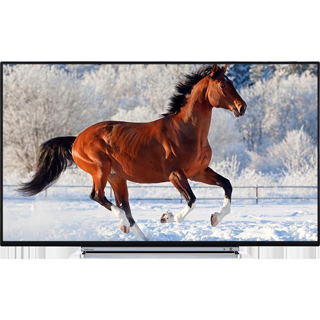"43"" Toshiba Ultra HD TV Front"