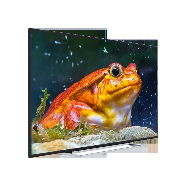 "55"" Toshiba Ultra HD WLAN TV Perspective"