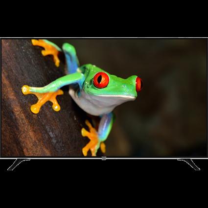 "75"" Toshiba Ultra HD TV Front Thumbnail"