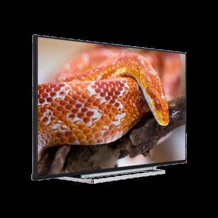 "55"" Toshiba Ultra HD TV Perspective Thumbnail"